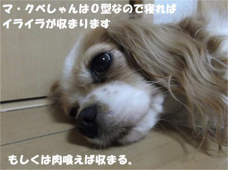 05_convert_20130920184341.jpg
