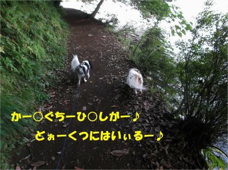 05_convert_20130923133349.jpg