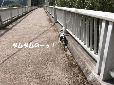 05_convert_20130924171355.jpg