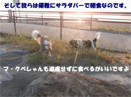 05_convert_20130925175244.jpg