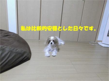 05_convert_20130926161133.jpg