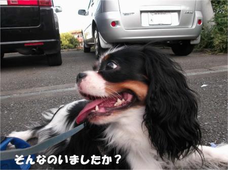 05_convert_20130930093401.jpg