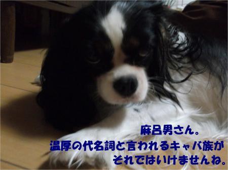 05_convert_20131005150037.jpg