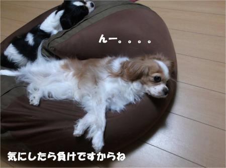 05_convert_20131008172821.jpg