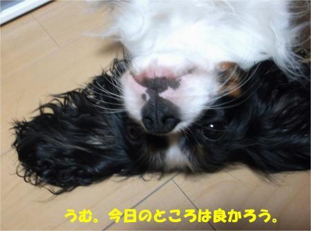 05_convert_20131009181623.jpg