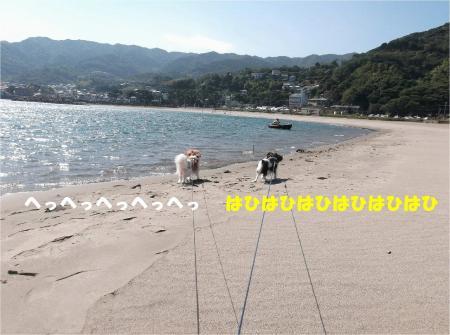 05_convert_20131012162110.jpg