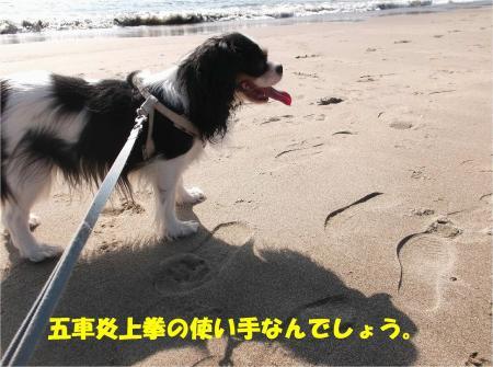 05_convert_20131015170814.jpg