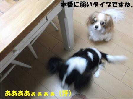 05_convert_20131023175818.jpg