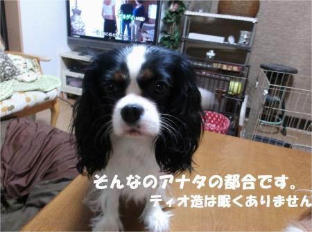 05_convert_20131024183408.jpg