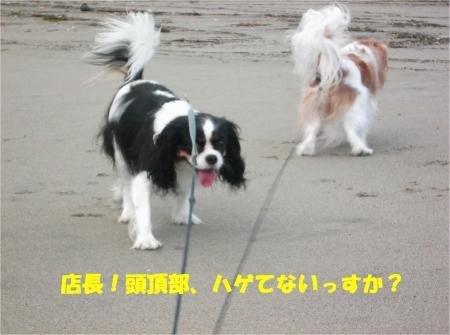 05_convert_20131029195909.jpg