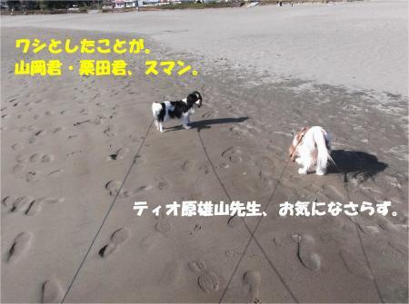 05_convert_20131204180210.jpg