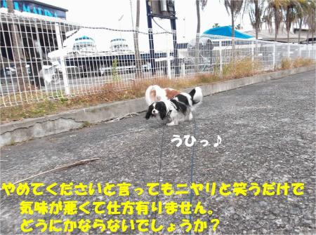 05_convert_20131210174236.jpg