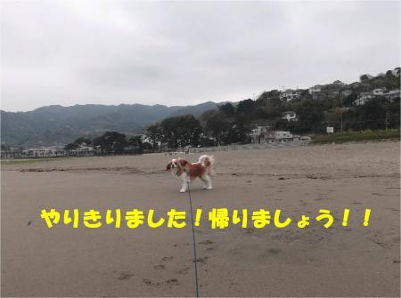 06_convert_20130401181641.jpg