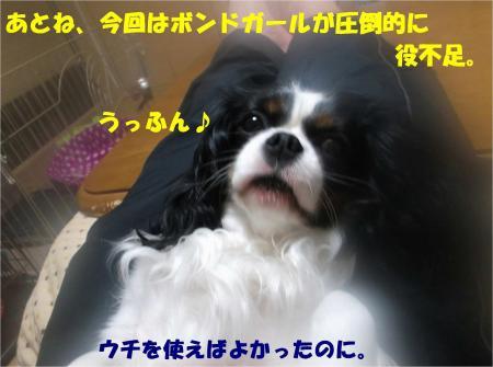 06_convert_20130409170611.jpg
