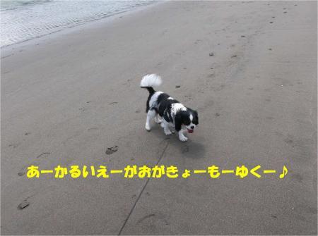06_convert_20130415172754.jpg