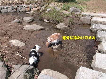 06_convert_20130430112542.jpg