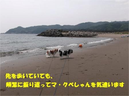 06_convert_20130527173947.jpg