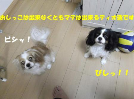 06_convert_20130606175840.jpg