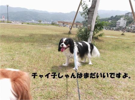 06_convert_20130610170230.jpg