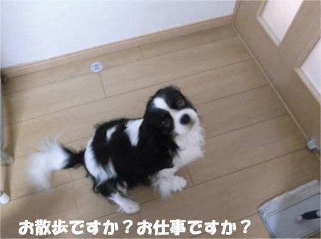 06_convert_20130614180302.jpg