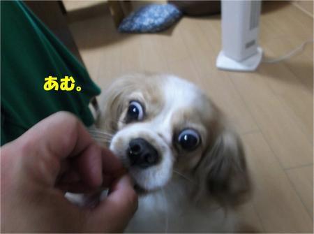 06_convert_20130619171230.jpg