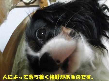 06_convert_20130628161615.jpg
