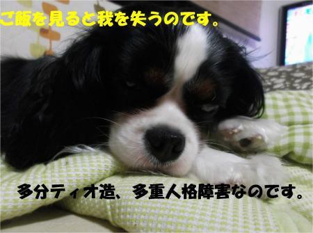 06_convert_20130705172222.jpg