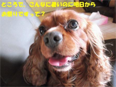 06_convert_20130712172133.jpg