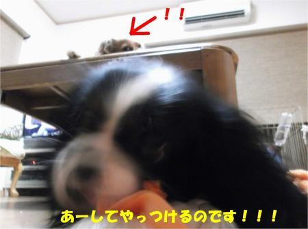 06_convert_20130725190826.jpg