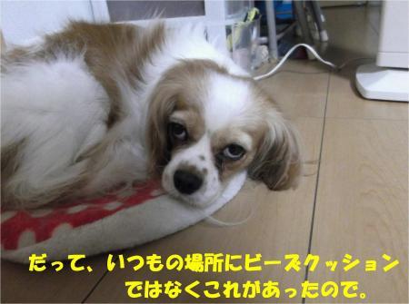 06_convert_20130729173603.jpg