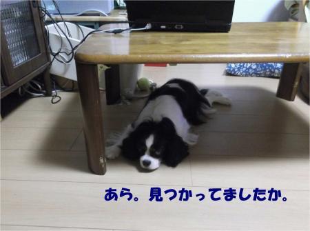 06_convert_20130821173746.jpg