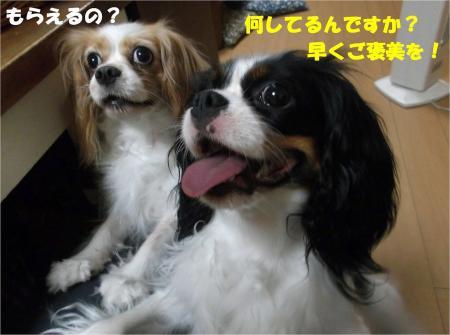 06_convert_20130830182025.jpg