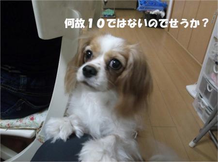 06_convert_20130904174640.jpg