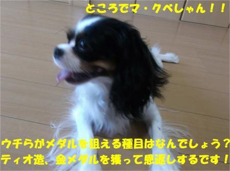 06_convert_20130913172147.jpg