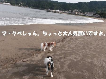 06_convert_20130917161502.jpg