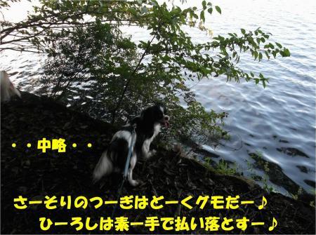 06_convert_20130923133400.jpg