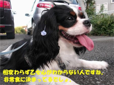 06_convert_20130930093412.jpg