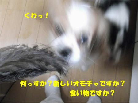 06_convert_20131007174134.jpg