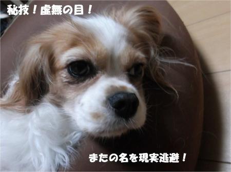 06_convert_20131008172831.jpg