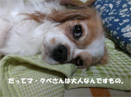 06_convert_20131018171020.jpg