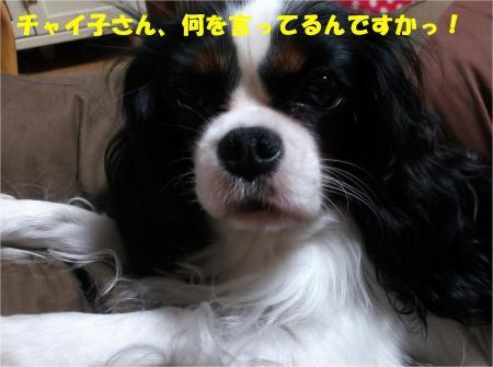 06_convert_20131025180023.jpg