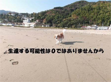 06_convert_20131119214424.jpg