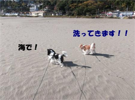 06_convert_20131202181009.jpg