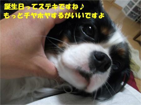 07_convert_20130402171342.jpg