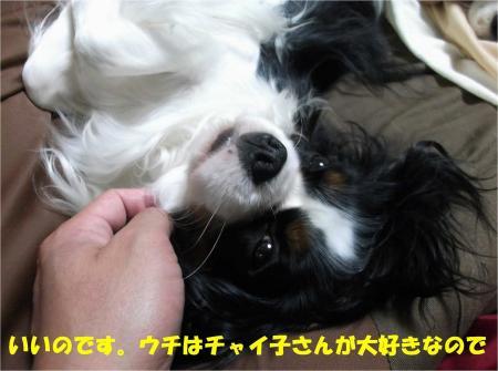 07_convert_20130412172424.jpg