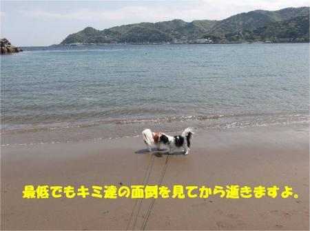 07_convert_20130416174200.jpg