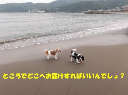 07_convert_20130603170101.jpg