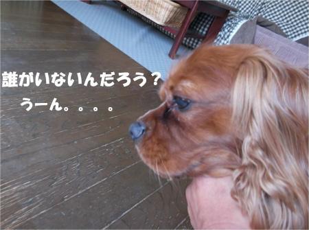 07_convert_20130604173404.jpg