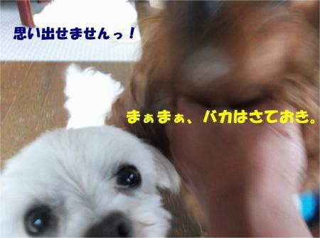 07_convert_20130612171229.jpg