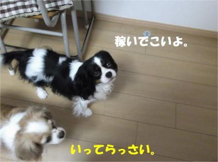 07_convert_20130614180313.jpg